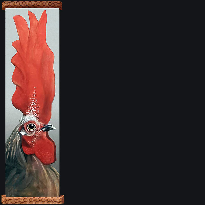 An exaggerated view of a rooster and its id.