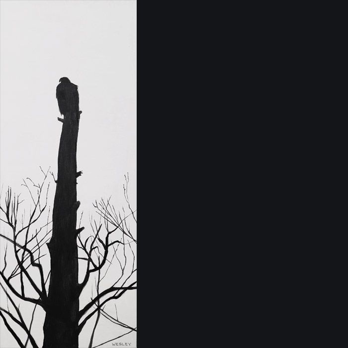 A golden eagle blends in with the dead post of a tree it's perched on.